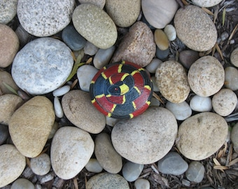 Painted Coral Snake Rock