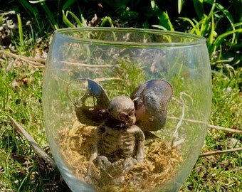 Mummified fairy with wings, fairy in a jar, skeleton fairy, creepy art, fairy corpse, fae