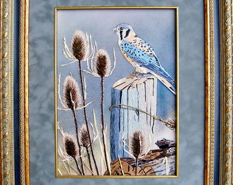 """The Painting """"The Kestrel"""""""