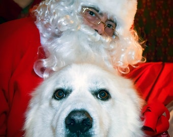Bubba's photos with Santa