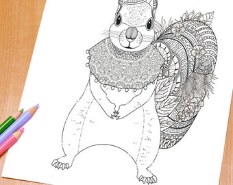 Lovely Squirrel - Adult Coloring Page Print