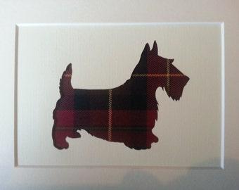 Scottish Terrier Tartan Picture