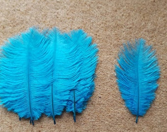 10 light blue/turquoise ostrich feathers