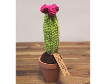 Crochet Cactus With Blooming Flower