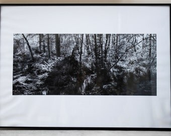 Framed Black and White Landscape Photograph
