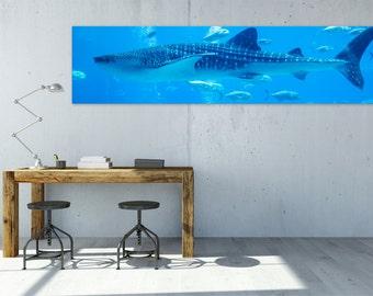 "Large Whale Shark Canvas Print | 60"" x 15"""