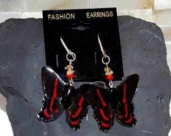 ON SALE real butterfly wing earrings. modern butterfly wing jewelry