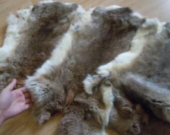 Belgian giant rabbit pelt