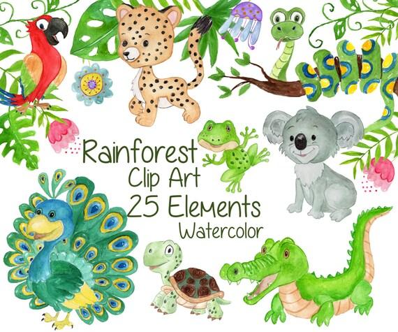 Watercolor animals clipart: RAINFOREST CLIPART