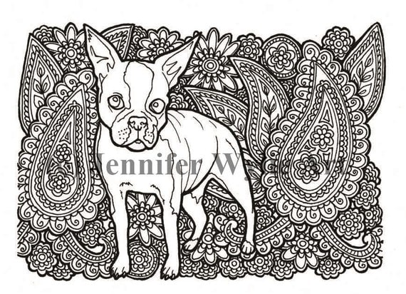 boston terrier adult coloring page dog colouring page printable adult coloring hand drawn instant download - Boston Terrier Coloring Page