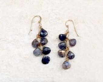 Labradorite Drop Earrings, 14k gold-fill