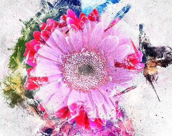 Hot Pink Gerbera Daisy Graphic Print