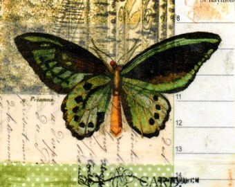 Butterfly collage, original collage on paper, contemporary art, vintage papers