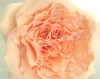 Heirloom Rose, Garden Rose - 4.5 inch.  Pale peach/coral or blush pink. Gum paste flowers cake toppers cake decoration sugar paste