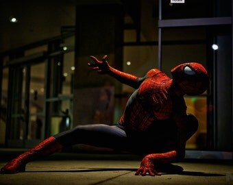 Spiderman Cosplay Print