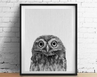 OWL Printable Art, Woodland Animal Print, Forest Animal Nursery Wall Art, Black and White Decor, Bird Owl Print Rustic Decor Nursery