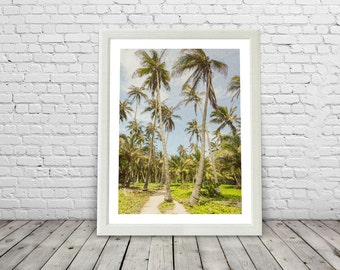 Tropical Palm Trees, Paradise, palms ,  Brazil, modern, palm tree print, palm trees posters, colour, Colombia