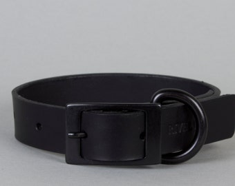 Black Leather Dog Collar with Black Metal Trim (M, L, XL)