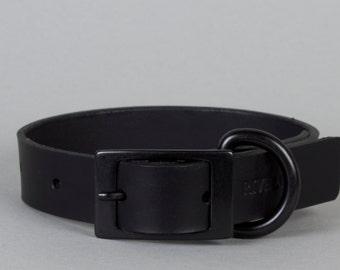 Black Leather Dog Collar with Black Metal Trim (M, L, XL)