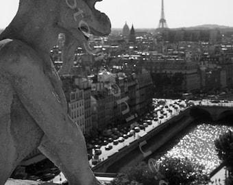 Paris, France. Notre Dame Gorgone.