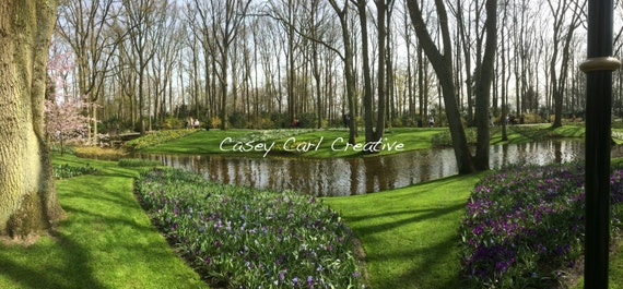 Nature Panoramic in the Netherlands
