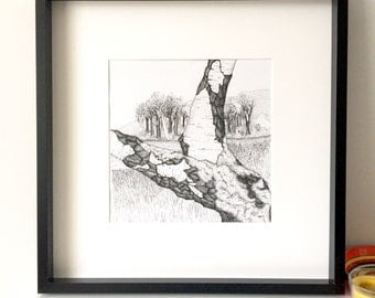 Silver Birch, tree picture, forest illustration, Wildwood, Black and White art, Forest art, line drawing, Wall Art, pen and ink, art print,