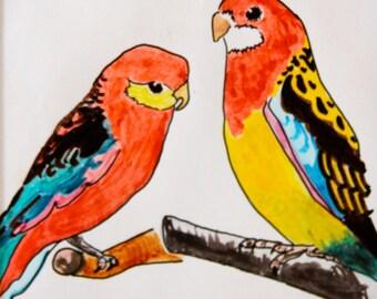 Parakeet Pair Cards or Prints