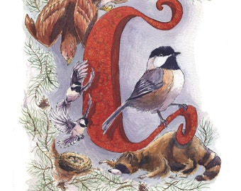 C is for Chickadee // Illuminated Letter