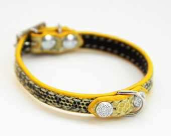 Dog Collar Genuine Lizard Yellow/Black