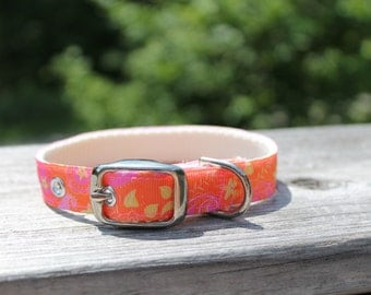 Orange with Pink and Yellow Paisley Collar