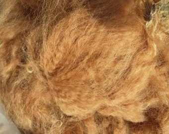 Fawn cria alpaca fibre, unwashed.