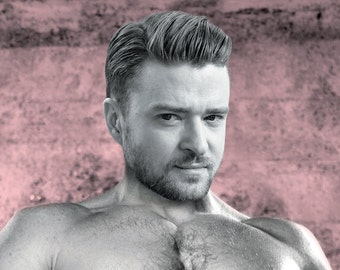 NSFW - Justin Timberlake - Pin the Junk on the Hunk - Bachelorette Birthday Divorce Party Game