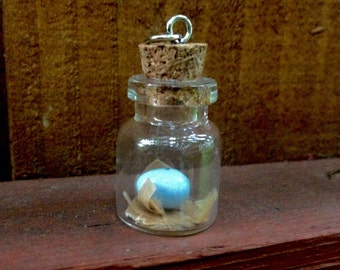 Robin's Egg in a Jar
