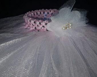 Ballerina princess tutu