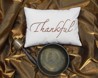 Thankful -FREE SHIPPING-pillow with hand work in beige color for any season, occasion or gift!