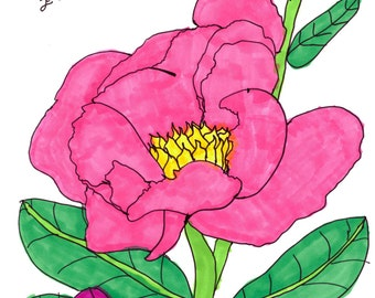 10 Peony Cards//flower cards//hand made//cards