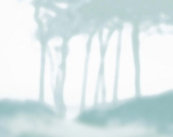 TREES print A3