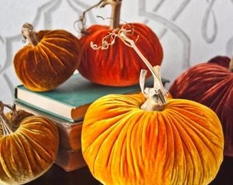 Velvet Pumpkins: Deluxe Harvest
