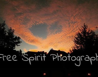 Digital Download. Color. Photography. Spread Your Wings