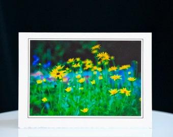 Card Art - Handmade - Summer - Birthday - Wedding - Holidays - Celebrations - Free Shipping