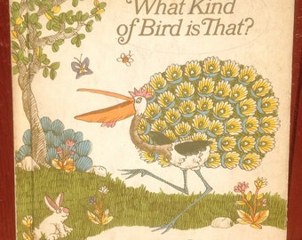 What Kind of Bird is That? - Mirra Ginsburg - Giulion Maestro - 1973 - Vintage Kids Book