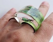 Funky green lucite ring with real exotic beetle
