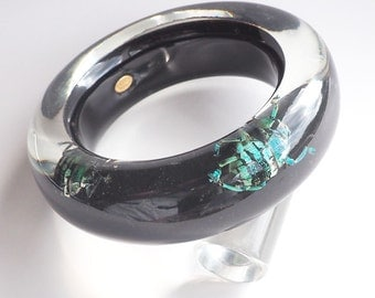 Black lucite bangle with real exotic insects