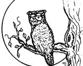 Downloadable coloring page Owl and Moon fantasy art