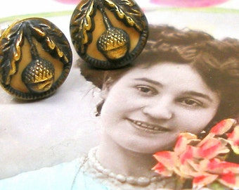 1900s Tiny Acorn BUTTON earrings, Victorian plants on sterling silver posts. Button jewellery.