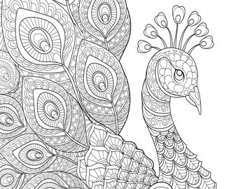Peacock coloring etsy for Adult coloring pages peacock