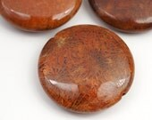 Fossil coral lentil beads, red topaz large round flat disk rust color semiprecious stone 30mm, 3 pcs