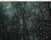 40% OFF SALE Whimsical Wall Decor Night Sky Moon and Stars Photo Surreal Nature Decor Night Landscape Picture 8x10 inch Photography Print Ba