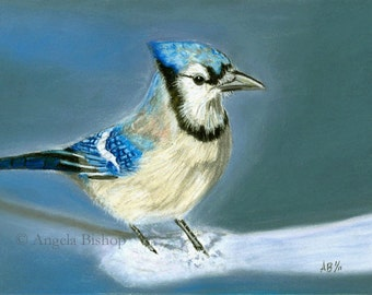 Blue Jay Painting Print, January Snow, Pastel Painting, Bird, Snow, Winter, Realism, Wildlife, Home Decor, Fine Art, Animal, 5 x 7