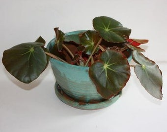 Turquoise Stoneware Planter for Herbs or Houseplants with built in drainage tray